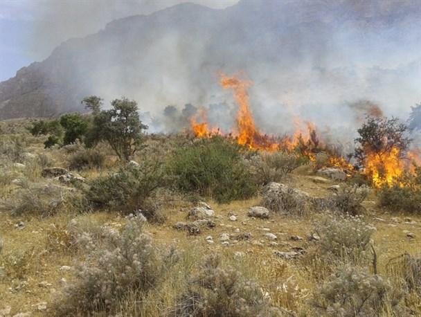 صدور حکم تعقیب عوامل آتش سوزی در دزفول