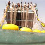 تردد شناورهای صیادی در آبهای خلیج فارس ممنوع شد