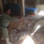 پایان عملیات سم پاشی در شهرستان اهواز