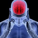 مغز زنها زودتر پیر میشود یا مغز مردها؟