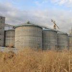 خرید گندم در خوزستان امسال به ۱٫۵میلیون تن می رسد