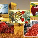 صدور موافقت اصولی و جواز تأسیس طرح های کشاورزی در خوزستان