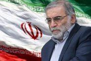 محل تدفین شهید فخریزاده در تهران