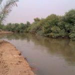 آزاد سازی یک هکتار از اراضی بستر رودخانه شاوور در شوش