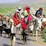 تلاش مضاعف دامپزشکی خوزستان جهت خدمت رسانی به عشایر