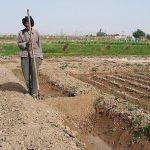 پیشگیری از گرمازدگی بهره برداران بخش کشاورزی در خوزستان