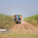 لغو ممنوعیت و محدودیت در کشت تابستانه خوزستان