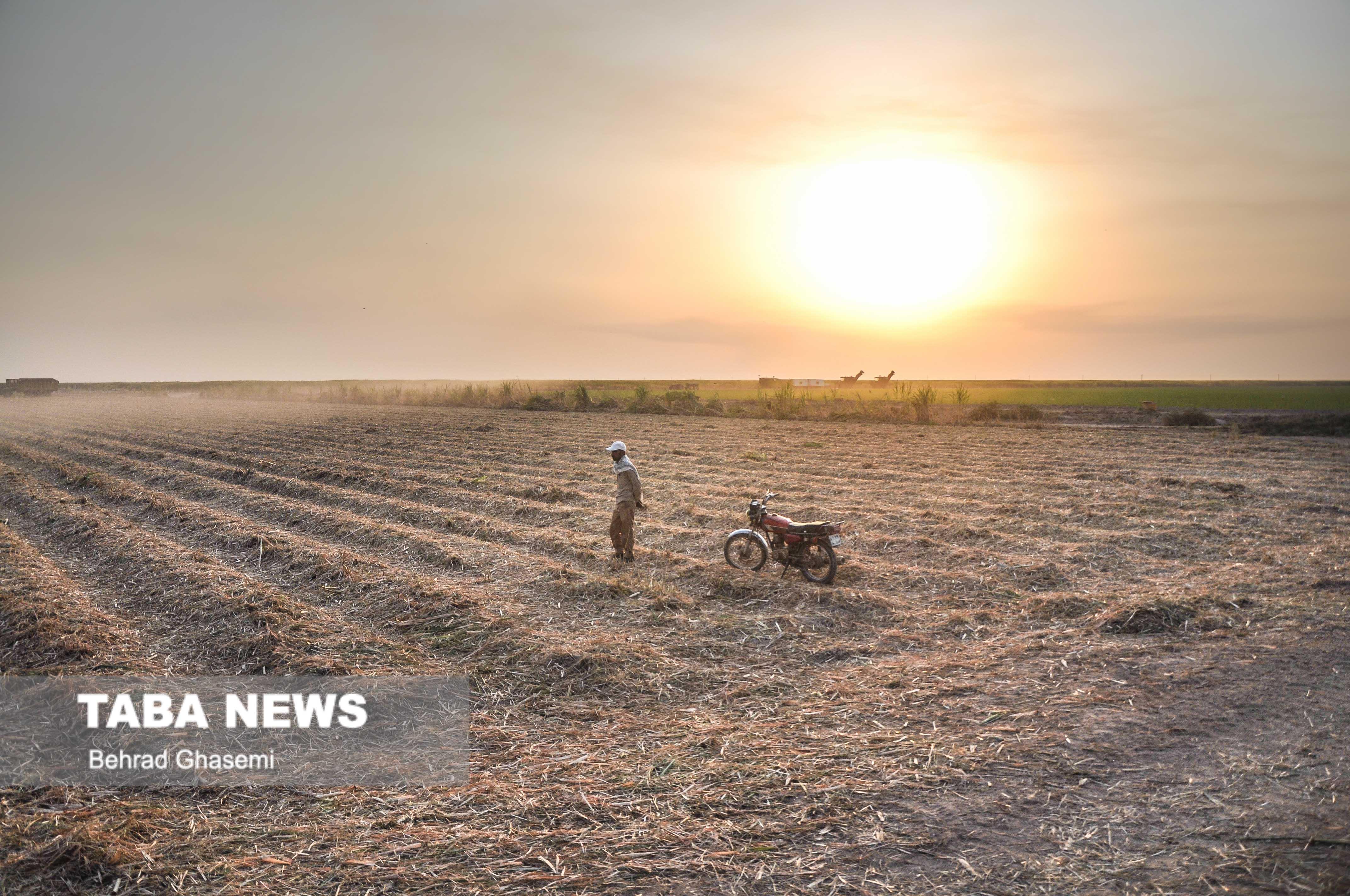 رفع تصرف از ۷ هزار متر مربع از اراضی ملی ماهشهر
