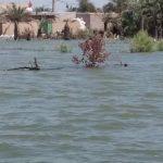 تخریب ۴۰ درصد خانههای روستایی شادگان