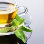 كاشت چای ترش برای نخستين بار در امیدیه