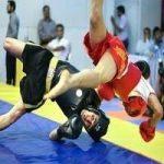 برترینهای مسابقه مجازی ووشو خوزستان مشخص شدند