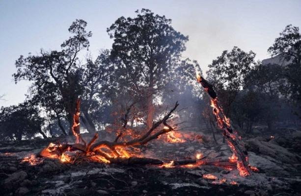۷۰ هکتار از مراتع شیمبار اندیکا در آتش سوخت