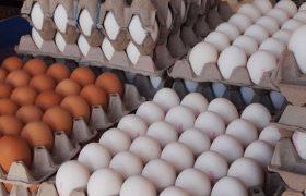 الزام عرضه تخم مرغ بستهبندی لغو شد