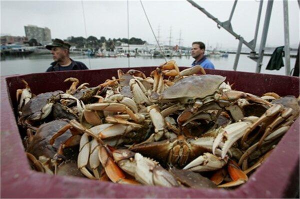 خرچنگهای قاچاقشده در کرج به رودخانههای خوزستان برمیگردند