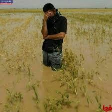 پرداخت چهار هزار و ۷۳۰میلیارد ریال به کشاورزان خسارت دیده از سیل در خوزستان