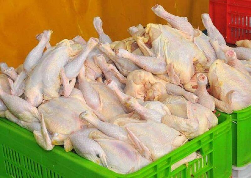 قسمتهایی از مرغ که هرگز نباید خورده شوند