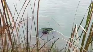 دختر و پسر عاشق در دریاچه سد کارون خودکشی کردند