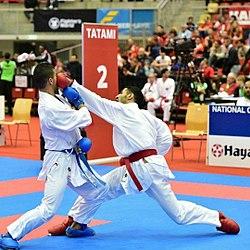 کاراتهکاهای خوزستانی در مسابقات جهانی قهرمان شدند