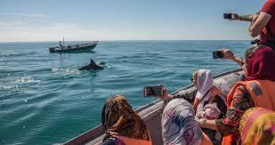 پرداخت تسهیلات به مشاغل گردشگری آسیبدیده از کرونا در خوزستان